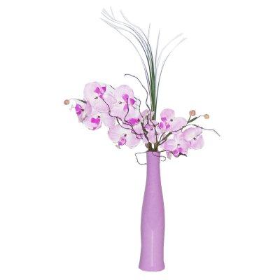 Alles für Orchideen