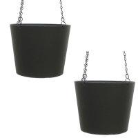 Set2 Kunststoff Ampel-Flori schwarz