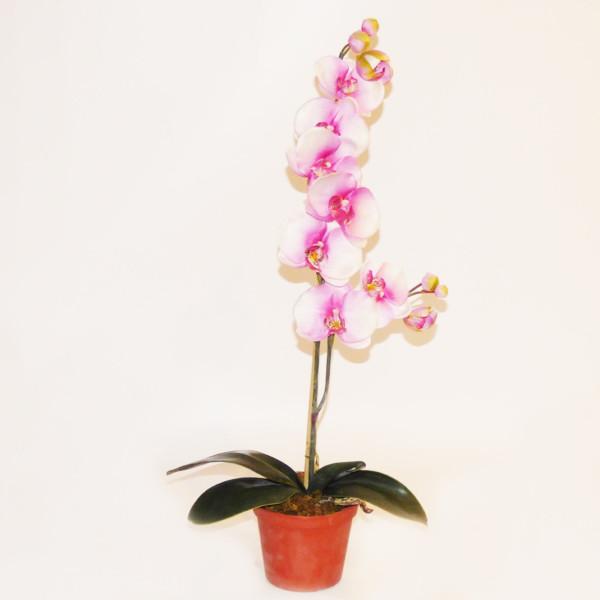 Kunstblume Orchidee weiss-pink, getopft, Höhe 65cm, 13 Blüten
