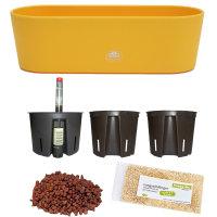 Set7 7 teilig Kunststoff Flori Pflanzschale gelb für Hydrokultur